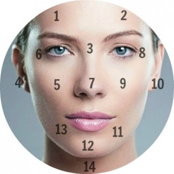 Skin Face Mapping